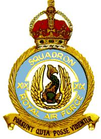 19 Sqn Badge
